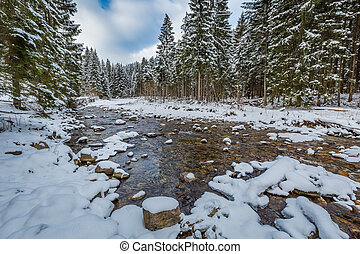 Mountain stream in winter, Tatra Mountains, Poland