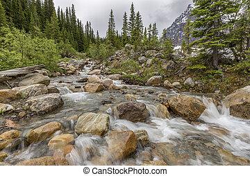 Mountain Stream - Jasper National Park, Alberta, Canada