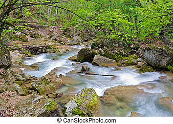 Mountain river flows among stones in wood