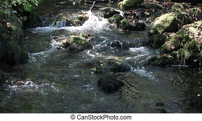 mountain stream nature