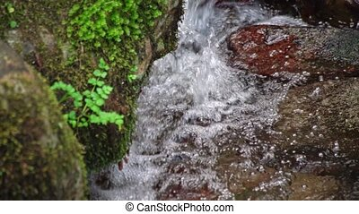 Mountain stream of clean and clear water flows in mountains...
