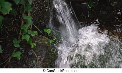 Mountain stream of clean and clear water flows in the ...