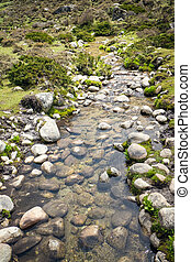 Mountain stream flowing over the rocks. Nepal