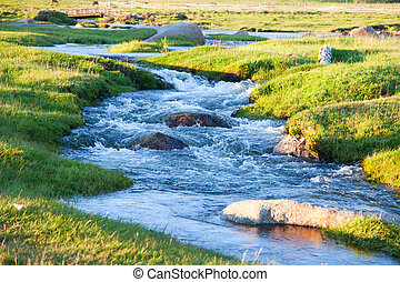 Mountain stream summer evening flowing over the rocks