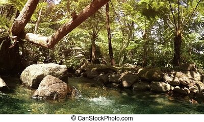 Mountain Stream through Tropical Rainforest in Thailand, ...