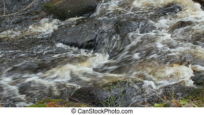 Mountain Stream, Water runs quickly through the rapids, loop