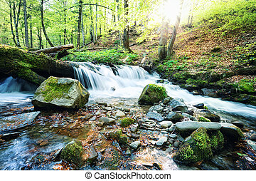 Mountain stream waterfall in the green forest