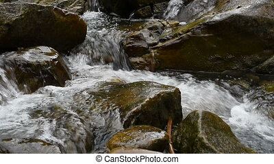 Mountain swift stream
