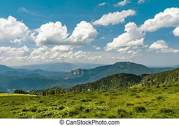 Mountain track in Romania