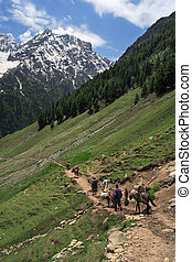 Mountain trekking in the Himalayas of Kashmir, India. Four men and horses follow the trail to the base of a mountain.