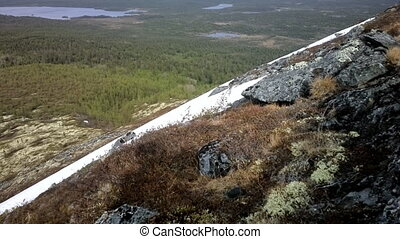Mountain tundra in Lapland - mountain tundra and forest at...