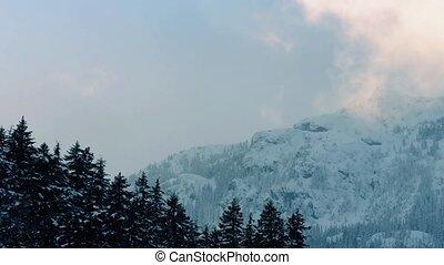 Mountain Vapor Catching Sunlight - Rising vapor mist...