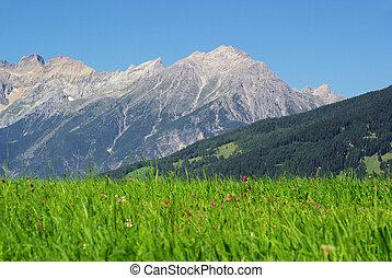 mountain Venet 11