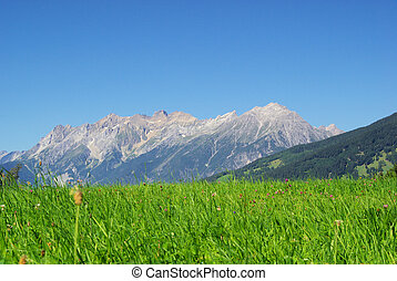 mountain Venet 14
