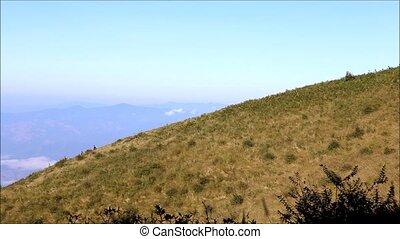 mountain - Nature trial of high mountain in Chiangmai...