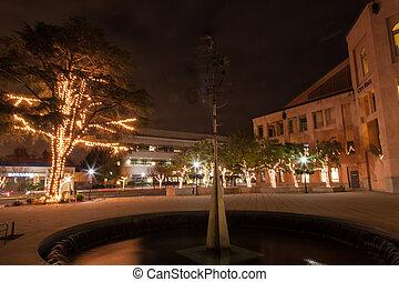 Mountain View Downtown