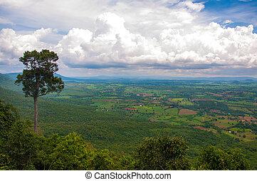 Mountain view point.