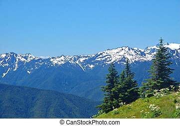 Mountain views - Olympic Mountains in Washington State