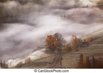 Farm on hills in the mountains. Waves of mist in a forest.