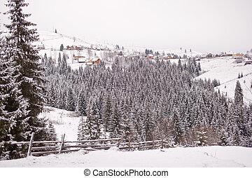 Mountain village in winter. Carpathians. Ukraine