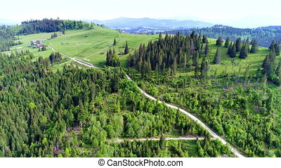 Mountain village landscape in Carpatian