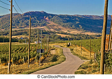 Mountain vineyard region scenic road, Kalnik, Croatia