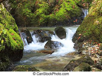 mountain waterfall. fast stream water