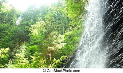 Mountain waterfall forest - Mountain waterfall stream in the...