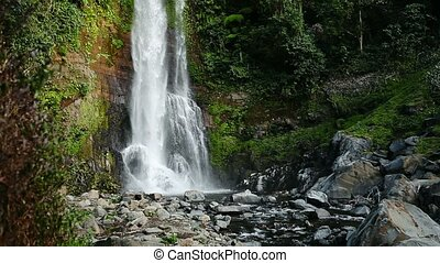 Mountain waterfall in rainforest