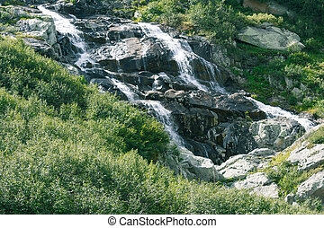 Mountain waterfall on a summer day