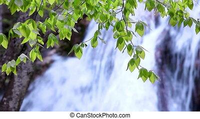 Mountain Waterfall, spring flow water