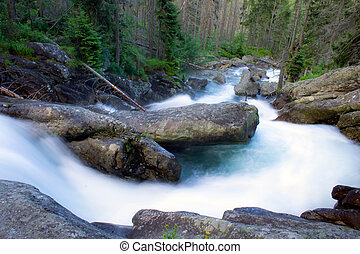 Mountain, wild river in forest in Slovakia