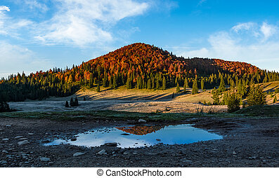 mountain with autumn forest reflecting in a puddle. lovely...
