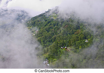 Mountain with forest seen through a hole in clouds, Sikkim, India