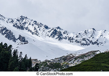 mountain with snow in valley