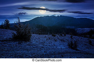 mountain with snowy peak in springtime at night in full moon...