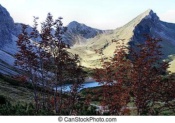 Mountain world in autumn in Tyrol, Austria; mountains,...