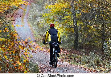mountainbiker in an autumn forest