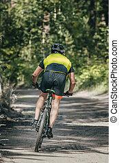 Mountainbiker rides in forest