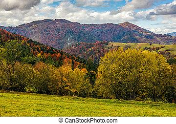 mountainious rural area in late autumn - mountain rural area...