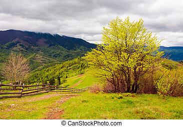 mountainous countryside in springtime. fence down the hill...