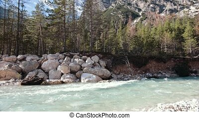 Mountainous forest with trees leaning over fast creek stream. Grey rocks.