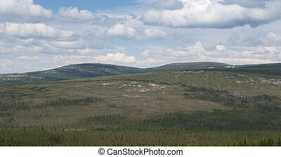 Mountainous summer landscape in South Yakutia, Russia, on a summer day