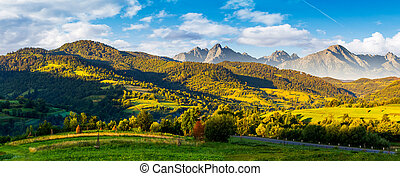 mountainous panorama of countryside at sunrise in summer....