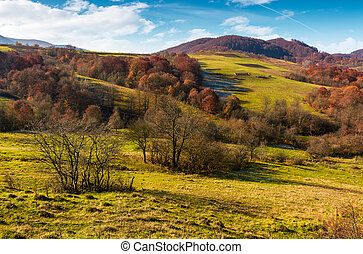 mountainous rural area in late autumn. trees with reddish...