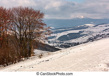 mountainous rural area in late winter. trees with reddish...