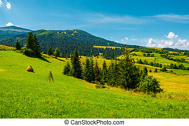 mountainous rural area on a bright summer day. rolling hills...