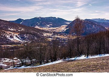 mountainous scenery of Uzhansky National Park. leafless...