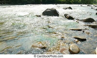 Mountainous trees river - Mysterious mountainous jungle with...