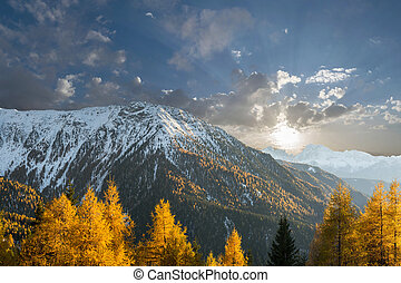 Mountains and bright autumn trees